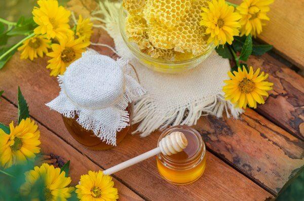 ハチミツと花